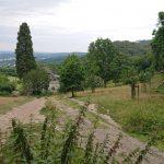 Loste Place am Drachenfels