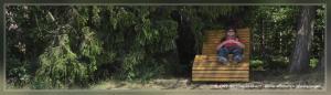 Waldfenster Panoramatour