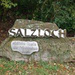 Saalequelle Salzloch