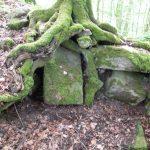 Ruine Schildeck