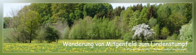 Wanderung Mitgenfeld Lindenstumpf